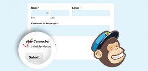 How-to-Add-a-MailChimp-Signup-Checkbox-to-Your-Contact-Form